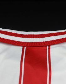 Shirt Collar Back, PSV Eindhoven 1994:1995